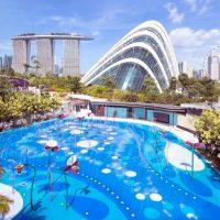 Сингапур — страна контрастов: полезные сведения о городе-государстве