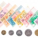 Валюта Сингапура: купюры и монеты, используемые в городе-государстве