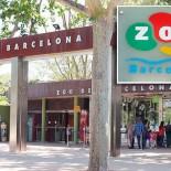 Зоопарк Барселоны: путешествие в мир животных